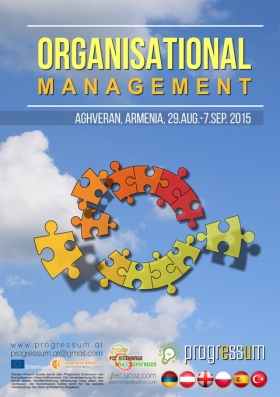 Organisational Management (2015)